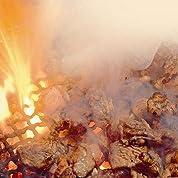 みやざき名物 鶏の炭火焼