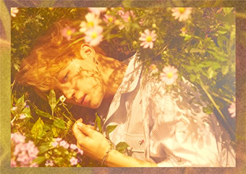 【Butterfly -Japanese Ver.-/BTS (防弾少年団)】意味深な歌詞!動画ありの画像