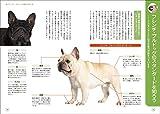 もっと楽しい フレンチ・ブルドッグライフ (犬種別 一緒に暮らすためのベーシックマニュアル) 画像