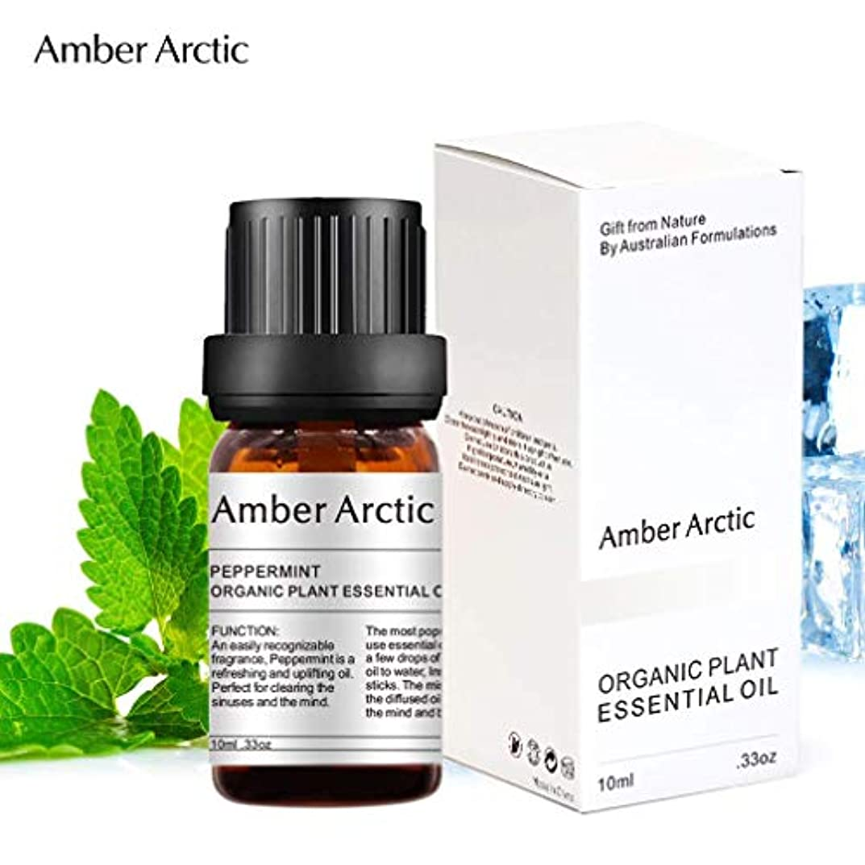 差し引く誰かバルクAmber Arctic ペパーミント エッセンシャル オイル、100% ピュア 天然 アロマ テラピーペパーミント オイル スプレッド 用 (10ML) ペパーミント