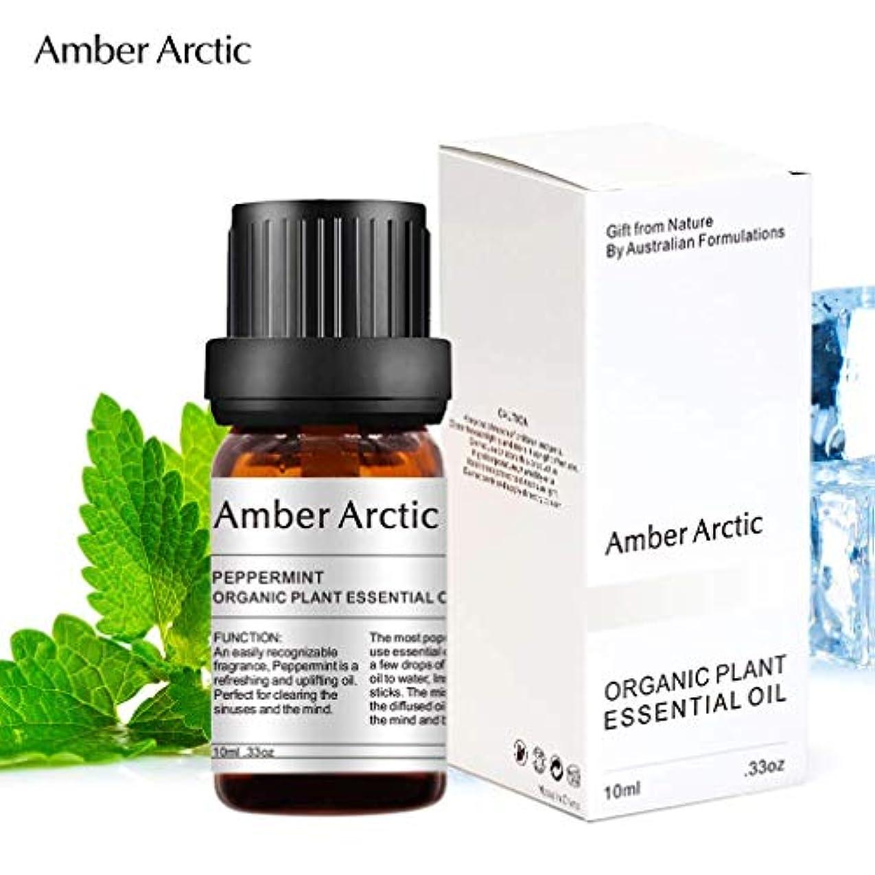 Amber Arctic ペパーミント エッセンシャル オイル、100% ピュア 天然 アロマ テラピーペパーミント オイル スプレッド 用 (10ML) ペパーミント