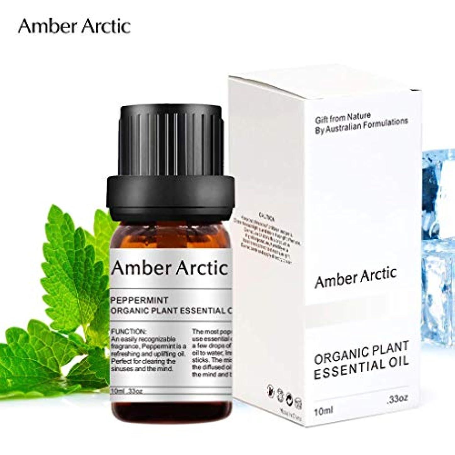 遠え信頼医学Amber Arctic ペパーミント エッセンシャル オイル、100% ピュア 天然 アロマ テラピーペパーミント オイル スプレッド 用 (10ML) ペパーミント