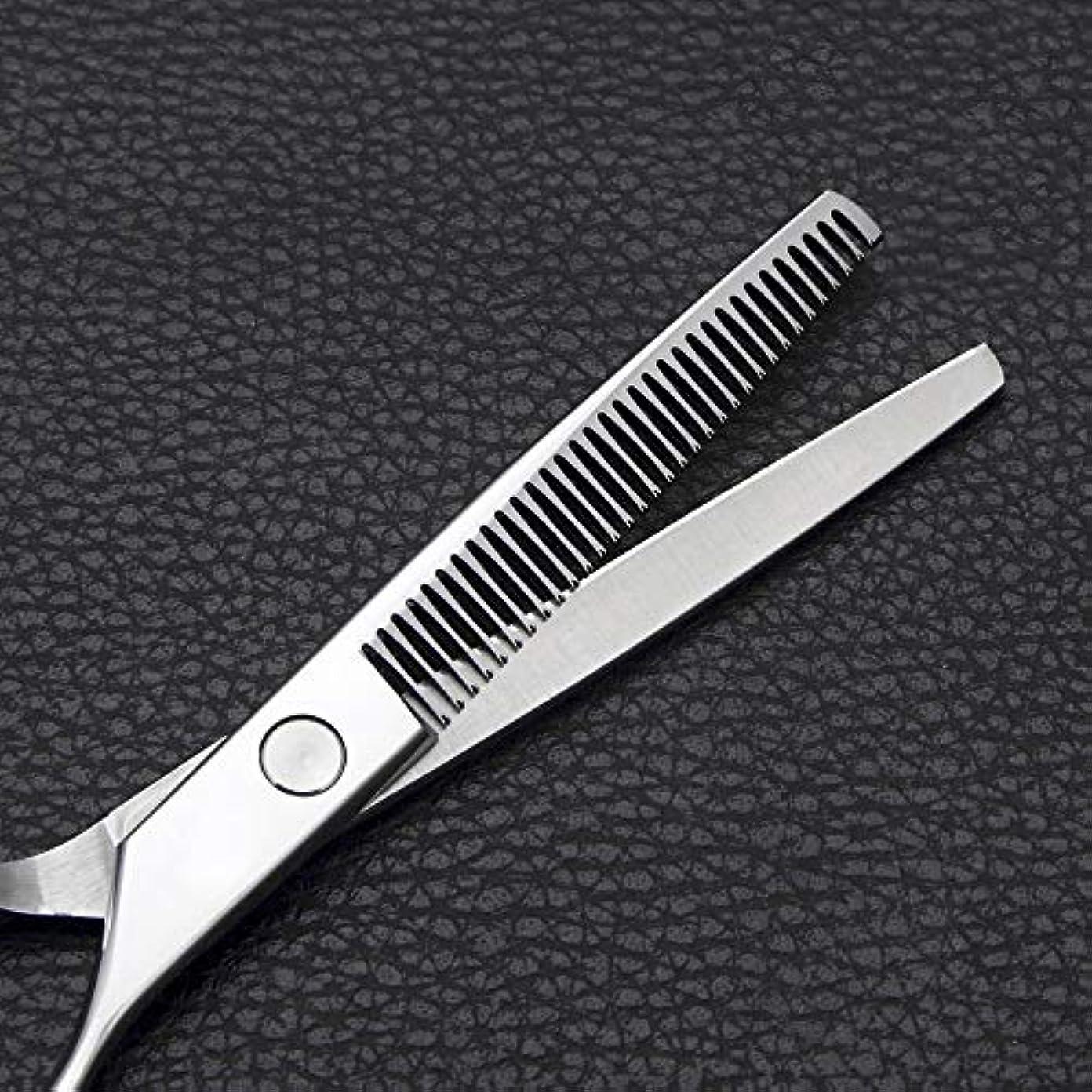 のみ許される地雷原6インチの理髪はさみ、ステンレス鋼の歯はさみをはさみます モデリングツール (色 : Silver)