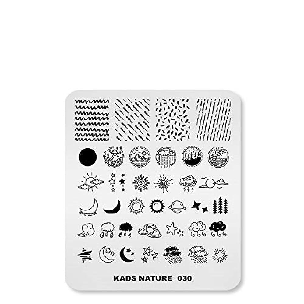 ストライク毛細血管花に水をやるKADS ネイルスタンププレート ナチュラルスタイル 太陽 月 ネイルイメージプレート ネイルステンシル (NA030)