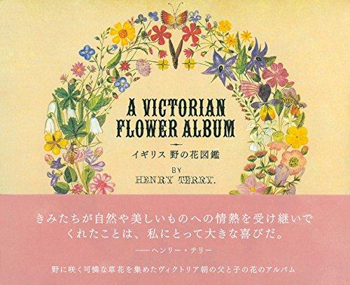 イギリス 野の花図鑑