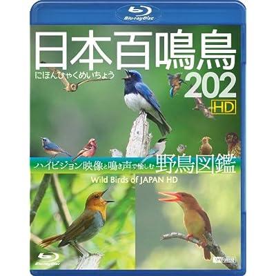 シンフォレストBlu-ray 日本百鳴鳥 202 HD ハイビジョン映像と鳴き声で愉しむ野鳥図鑑