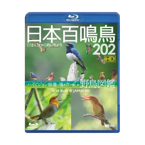 シンフォレストBlu-ray 日本百鳴鳥 202...の商品画像