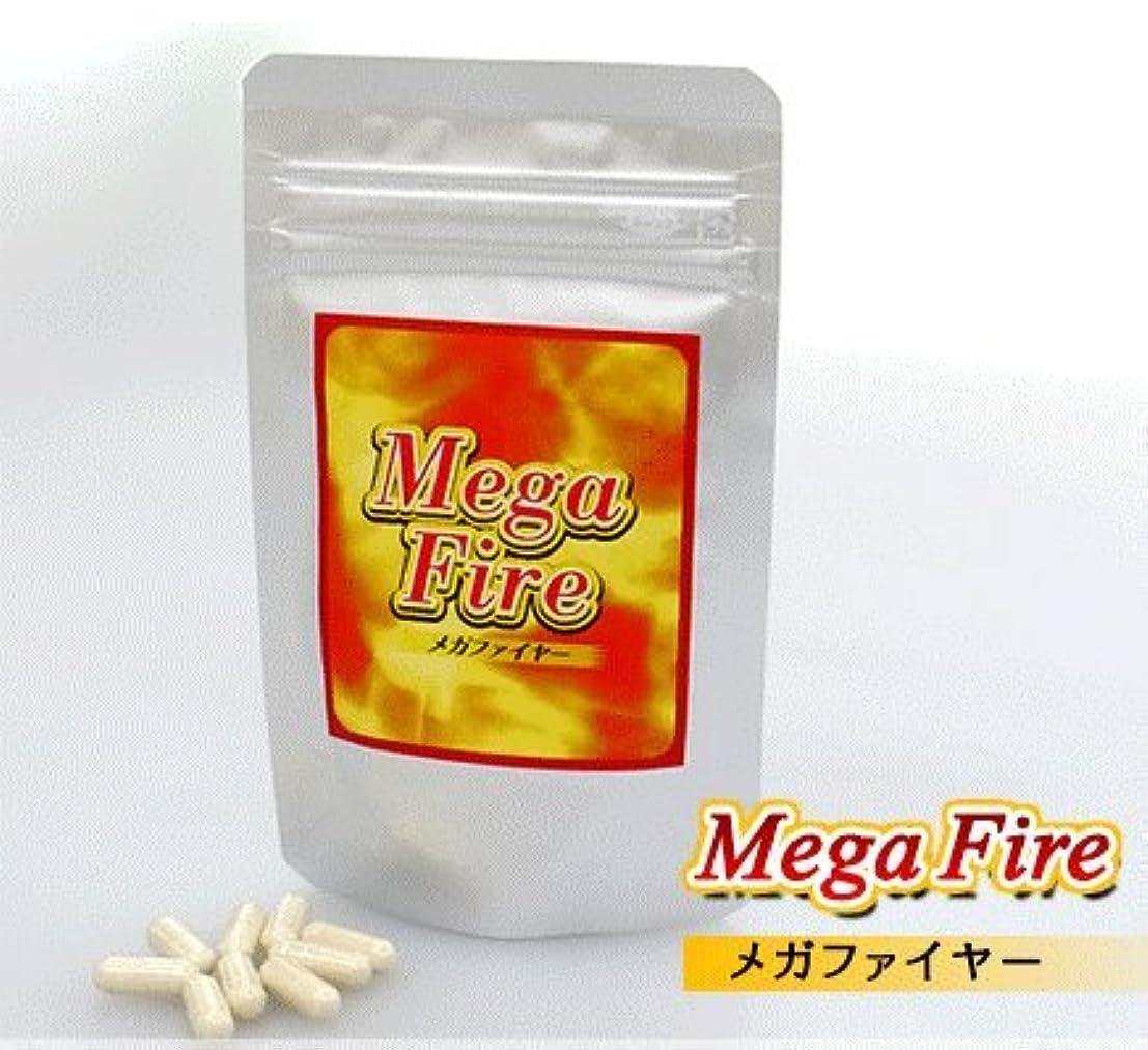 相手必需品洪水MegaFire(メガファイヤー)