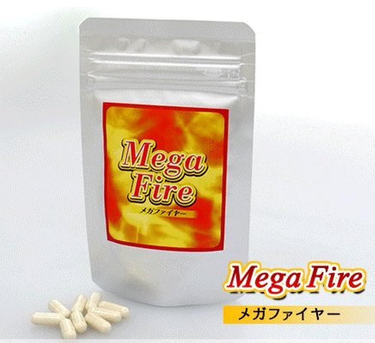さらに城秋MegaFire(メガファイヤー)3ヶ月セット