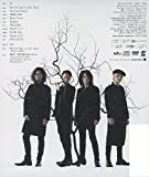 STAY ALIVE(初回生産限定盤)(DVD付) 画像
