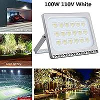 ACHICOO ナイトライト調節可能 ブラケット付き 100W 110V 8000LM IP65 LED フラッドライト