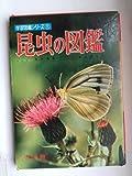 昆虫の図鑑[古書] (学習図鑑シリーズ)