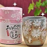 敬老の日プレゼント長寿のお茶80gとコスモス湯呑(敬老の日)セット