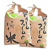 新米【玄米】29年産 富山県産 コシヒカリ 黒部川扇状地で育ったドリームファームのこだわり米 (10kg [5kg×2]) 一等米 農家直送