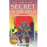Secret of the Ninja (Choose Your Own Adventure #16): 016