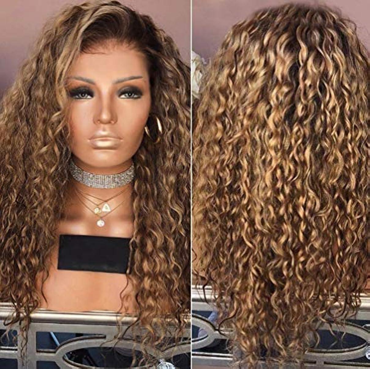 微視的好きである好む女性カーリーブラジルウィッグ実体波ナチュラルカラーブラジル実体波かつらブラウン65 cm