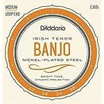 D'Addario EJ63i 12-36 Nickel Irish Tenor Banjo String 【TEA】 [並行輸入品]