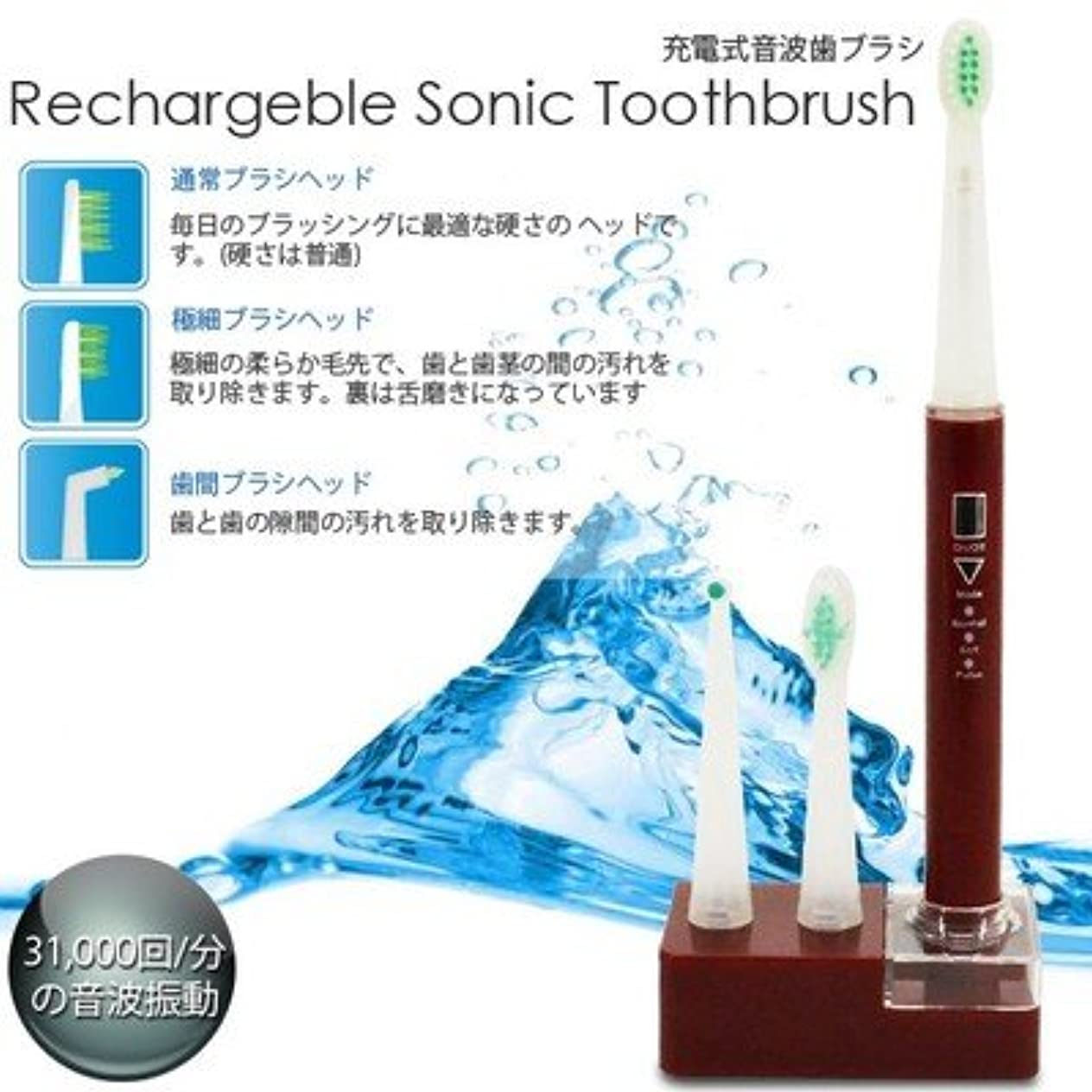 チャップ取り扱いメタルライン美容?衛生/充電式/音波歯ブラシ/3種類/ブラシ付属/RST-2062/赤