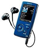 SONY ウォークマン Aシリーズ ビデオ対応 2GB バイオレット NW-A805 V 画像