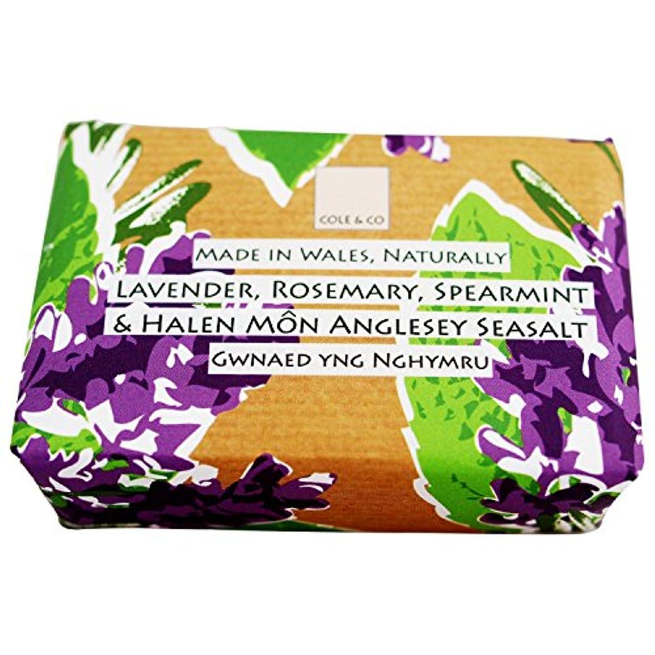 誇大妄想ジョットディボンドン縞模様のコール&共同ラベンダーローズマリーとスペアミント石鹸80グラム (Cole & Co) (x2) - Cole & Co Lavender Rosemary and Spearmint Soap 80g (Pack of...
