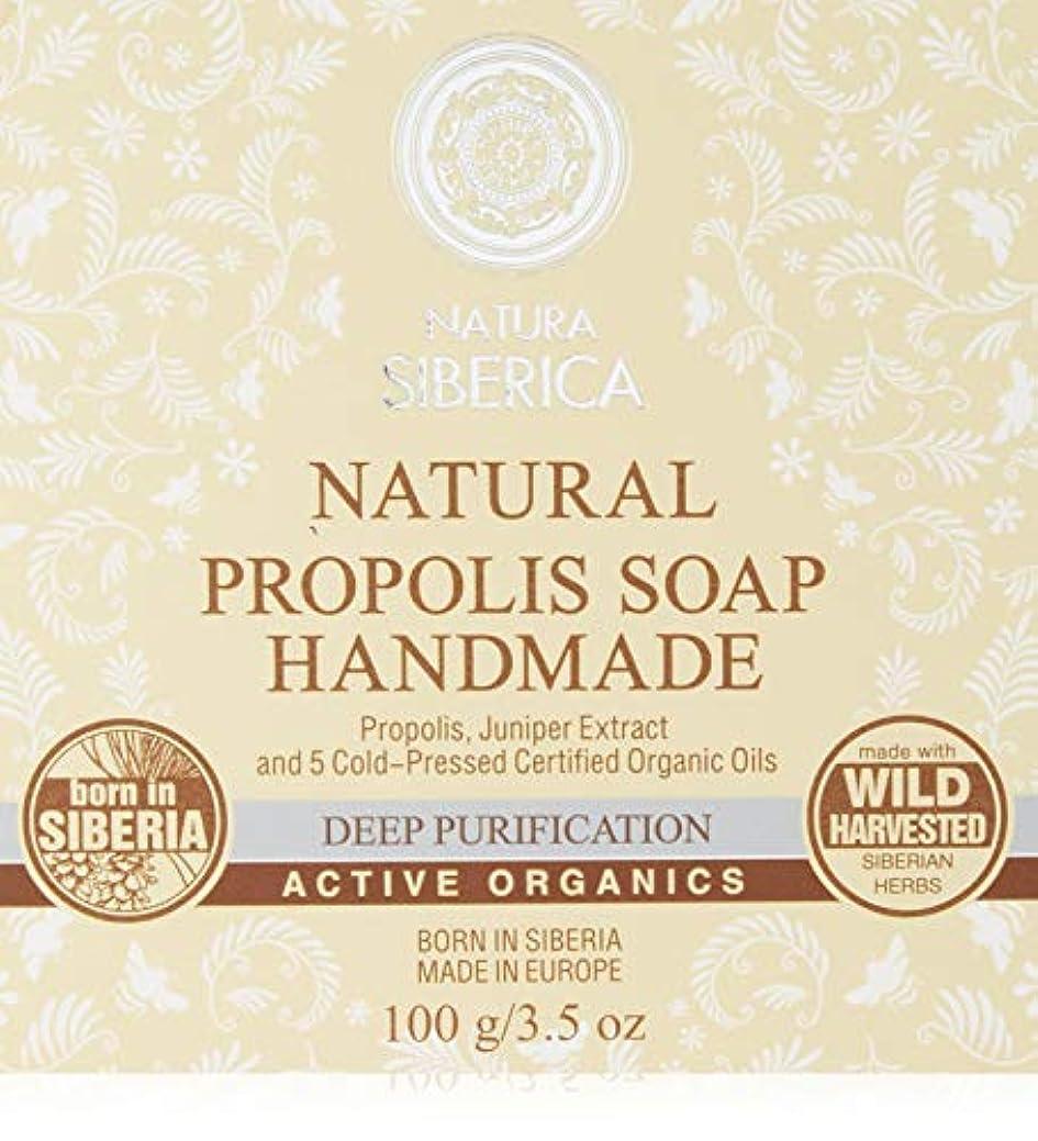 プレミアム洗剤役立つNATURA SIBERICA(ナチュラシベリカ) ナチュラルPRPソープ ハンドメイド 石鹸 100g