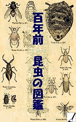 百年前昆虫の図鑑