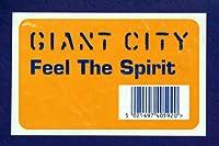 Feel the Spirit [12 inch Analog]