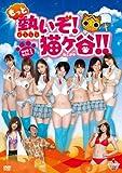 もっと熱いぞ!猫ヶ谷!!DVD-BOXⅠ