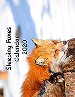 Sleeping Foxes Calendar 2020