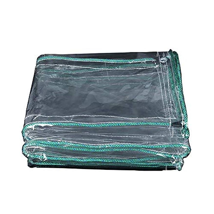 教苦痛推定Lixingmingqi 防水布、防水シート透明キャンバス防水シート透明バルコニーレインカーテン日焼け止め布pvc肥厚プラスチック布