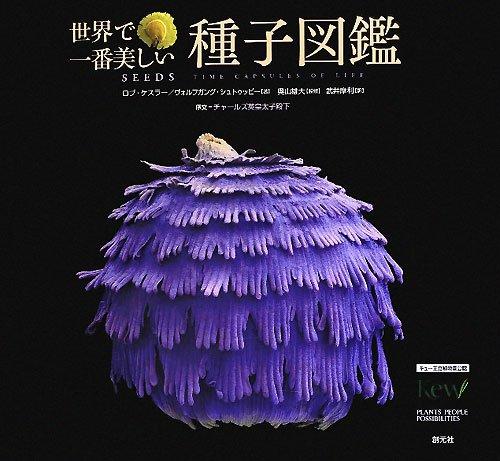 世界で一番美しい種子図鑑の詳細を見る