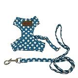 選べる 8種 3サイズ ハーネス リード セット 小型犬 猫用 【DauStage】 トートバッグ付き (M(胸囲30~38cm), ドット柄ブルー)