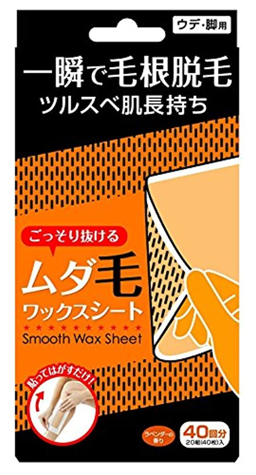 プラグ寝具社会主義者Smooth Wax Sheet スムースワックスシート (40回分)