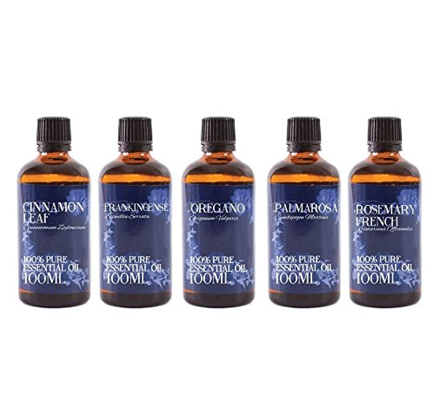 ソロ始まり心理的にMystic Moments | Gift Starter Pack of 5 x 100ml - Yang - Essential Oils