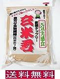 玄米粉 玄米君 500gx2袋セット (高焙煎の香り高い玄米全粒粉)