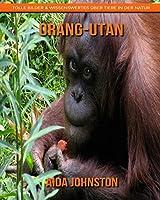 Orang-Utan: Tolle Bilder & Wissenswertes ueber Tiere in der Natur