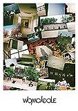 【Amazon.co.jp限定】旅鴉の鳴き声 (初回限定盤)(DVD付)(特典:メガジャケ付)