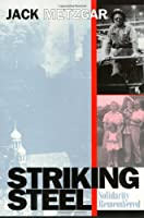 Striking Steel: Solidarity Remembered (Critical Perspectives on the Past)