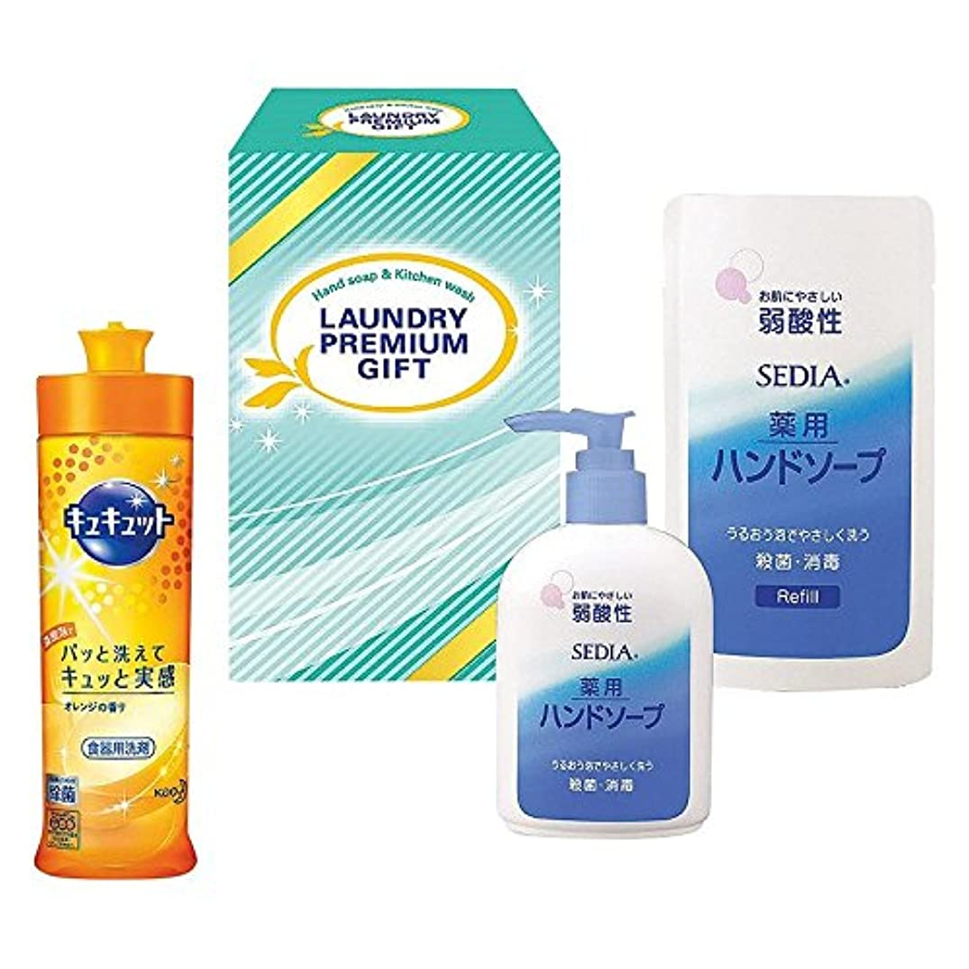 合意前書き生き返らせる花王 洗剤プレミアムギフト NO.184 (B605-10)