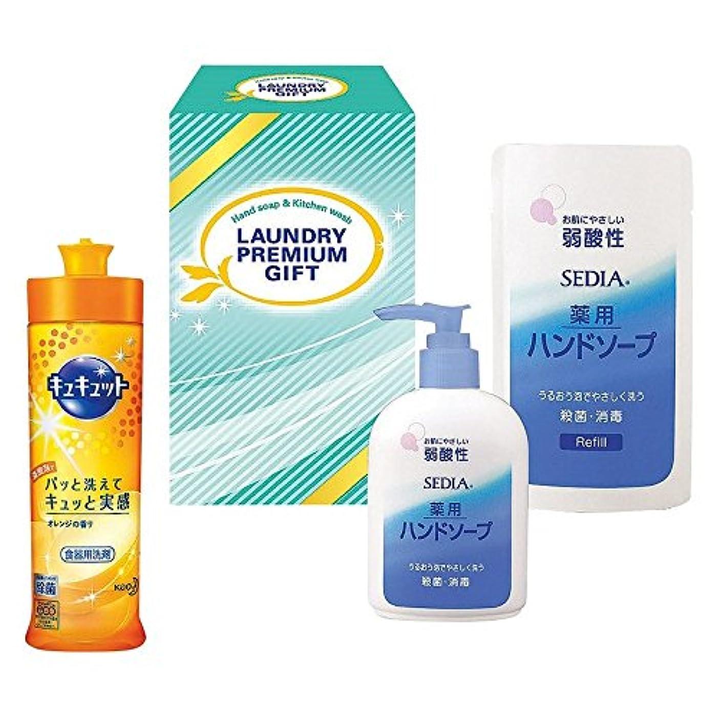 る関連するセグメント花王 洗剤プレミアムギフト NO.184 (B605-10)