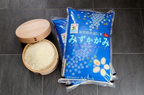 新米 みずかがみ 環境こだわり米 10kg【令和元年・滋賀県産】