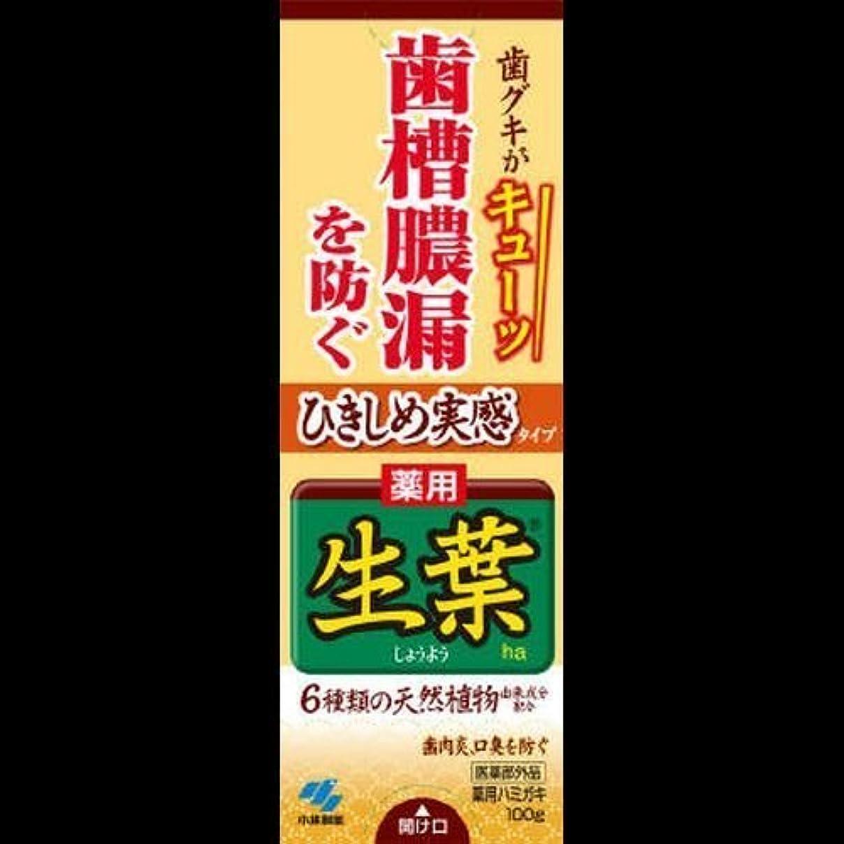 ひきしめ生葉 100G ×2セット