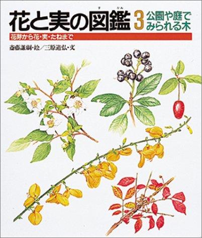 公園や庭でみられる木 花芽から花・実・たねまで (花と実の図鑑)