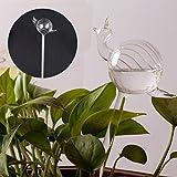 KICODE Watering Aqua Globes Hand Blown Mini Glass Vase Automatic Plant Waterer Bulbs Decorative Design One Size Snails