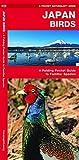 Japan Birds: A Folding Pocket Guide to Familiar Species (A Pocket Naturalist Guide) 画像