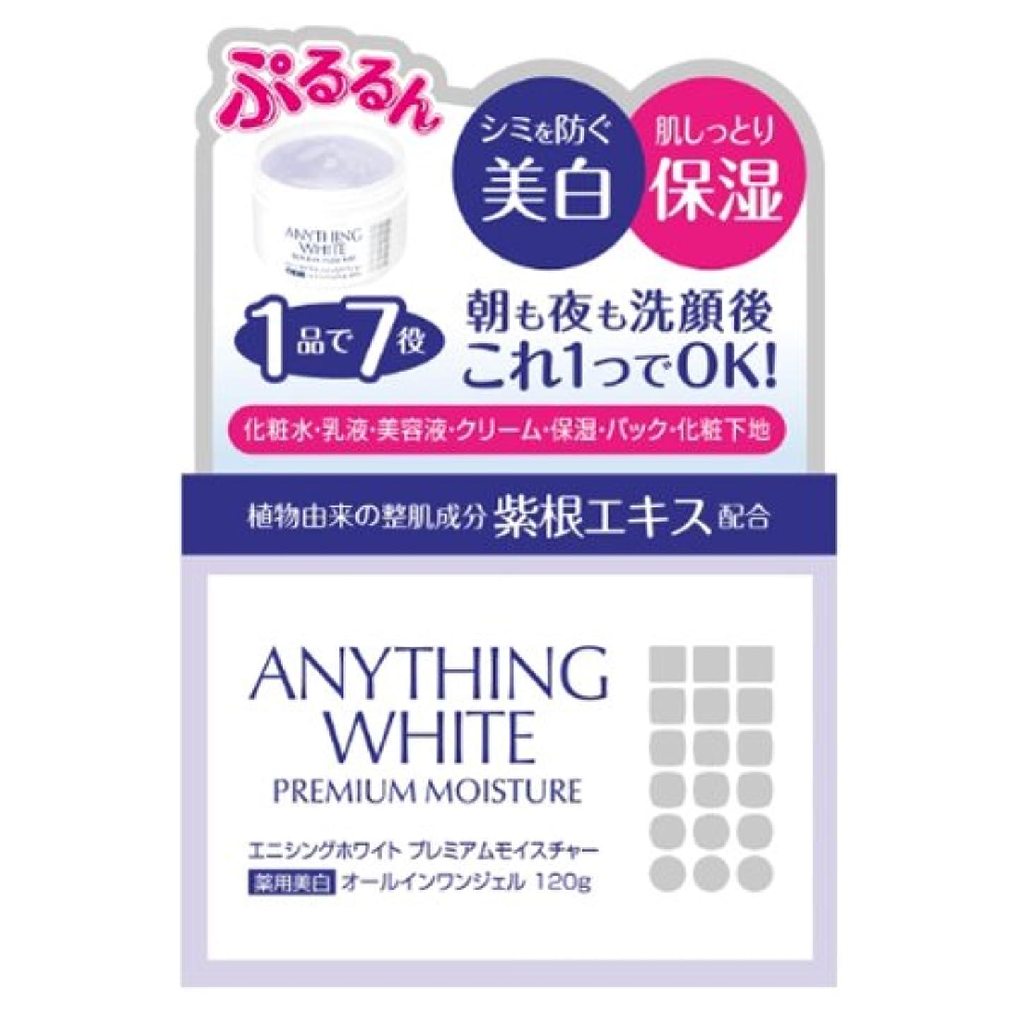 対称使い込む困惑するエニシングホワイト プレミアムモイスチャー 120g