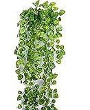 【SCGEHA】フェイクグリーン インテリア イミテーション 人工 観葉植物 壁掛け 緑 癒し 3種類(Bタイプ/2本)