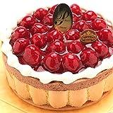 最高級洋菓子 ヴァルトベーレ 木苺チョコレートケーキ15cm
