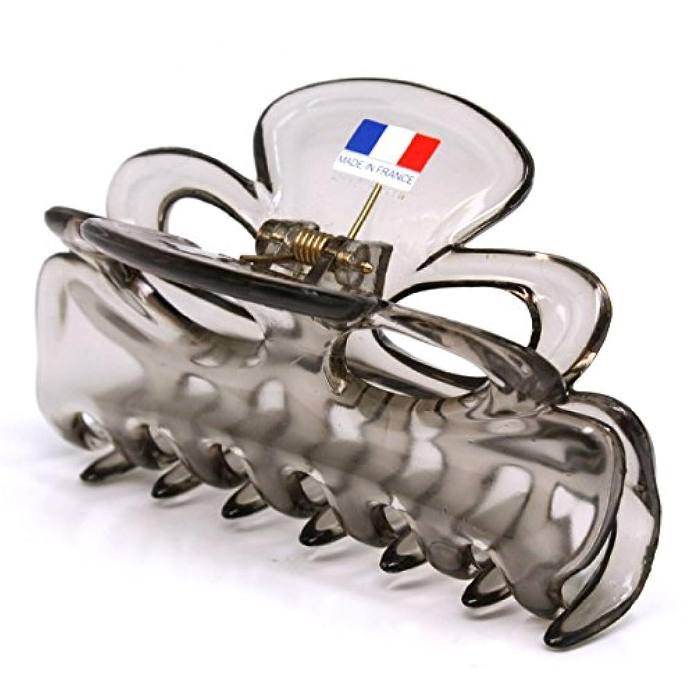 熱望する事実好むフランスクリップ グレー