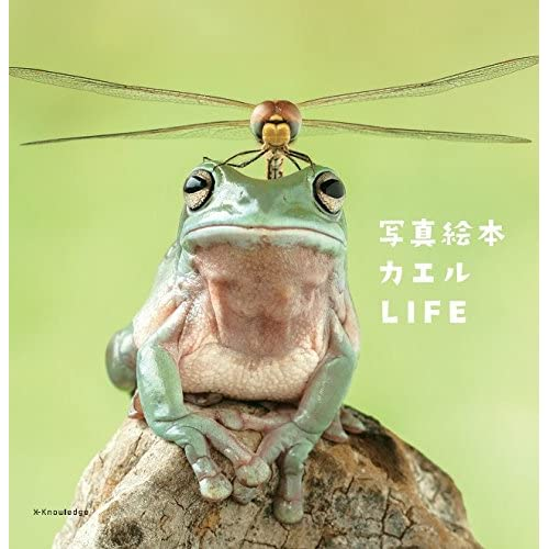 写真絵本 カエルLIFE